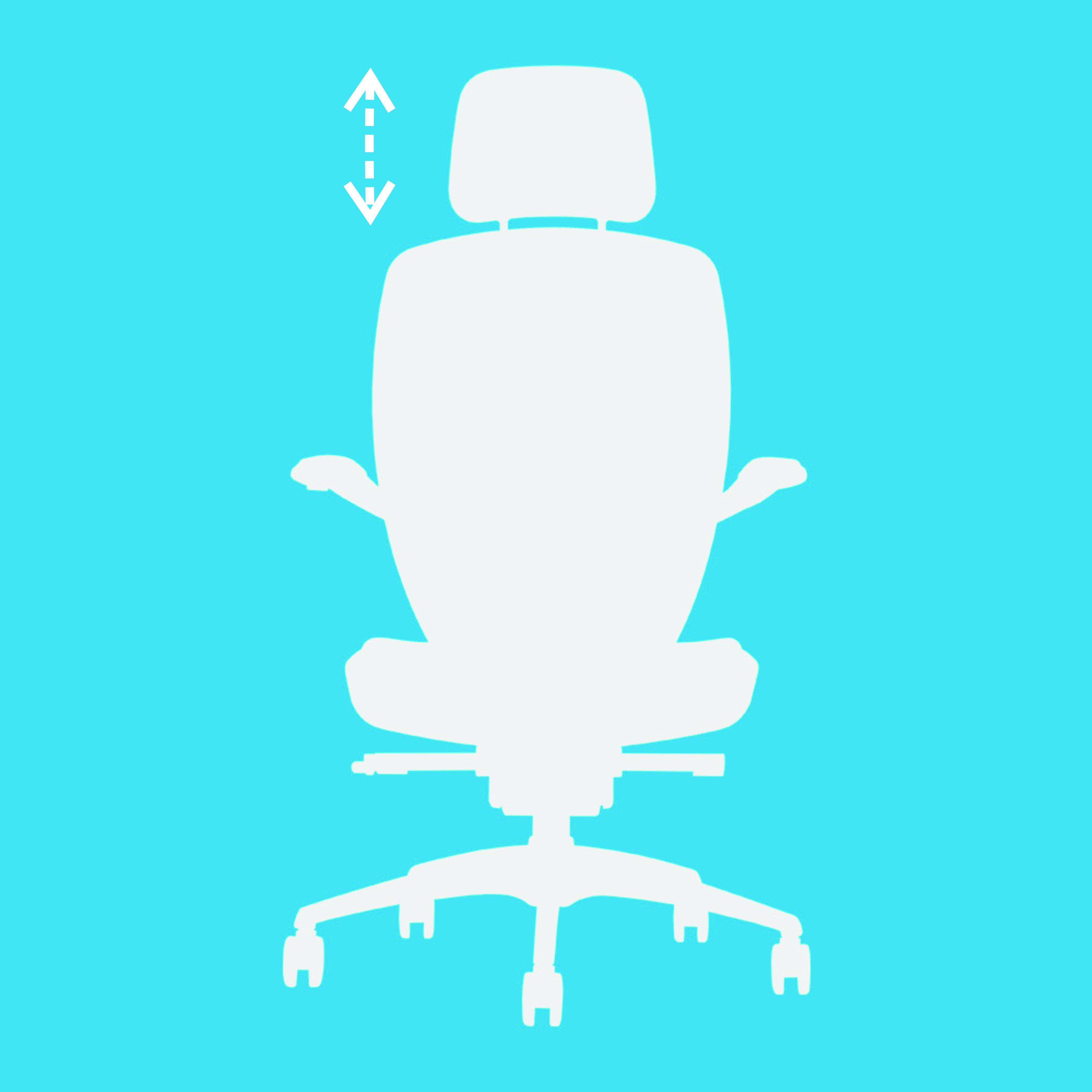 Headrest Mechanism