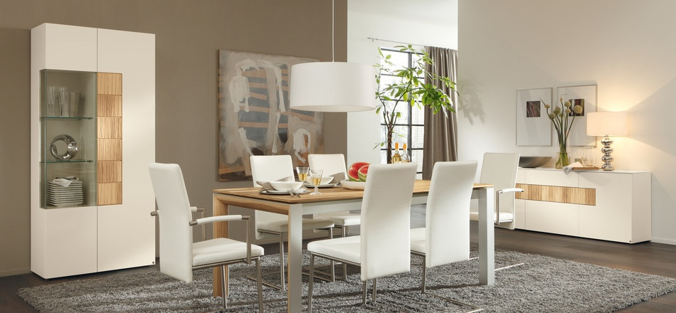 Dining Table with Furniture