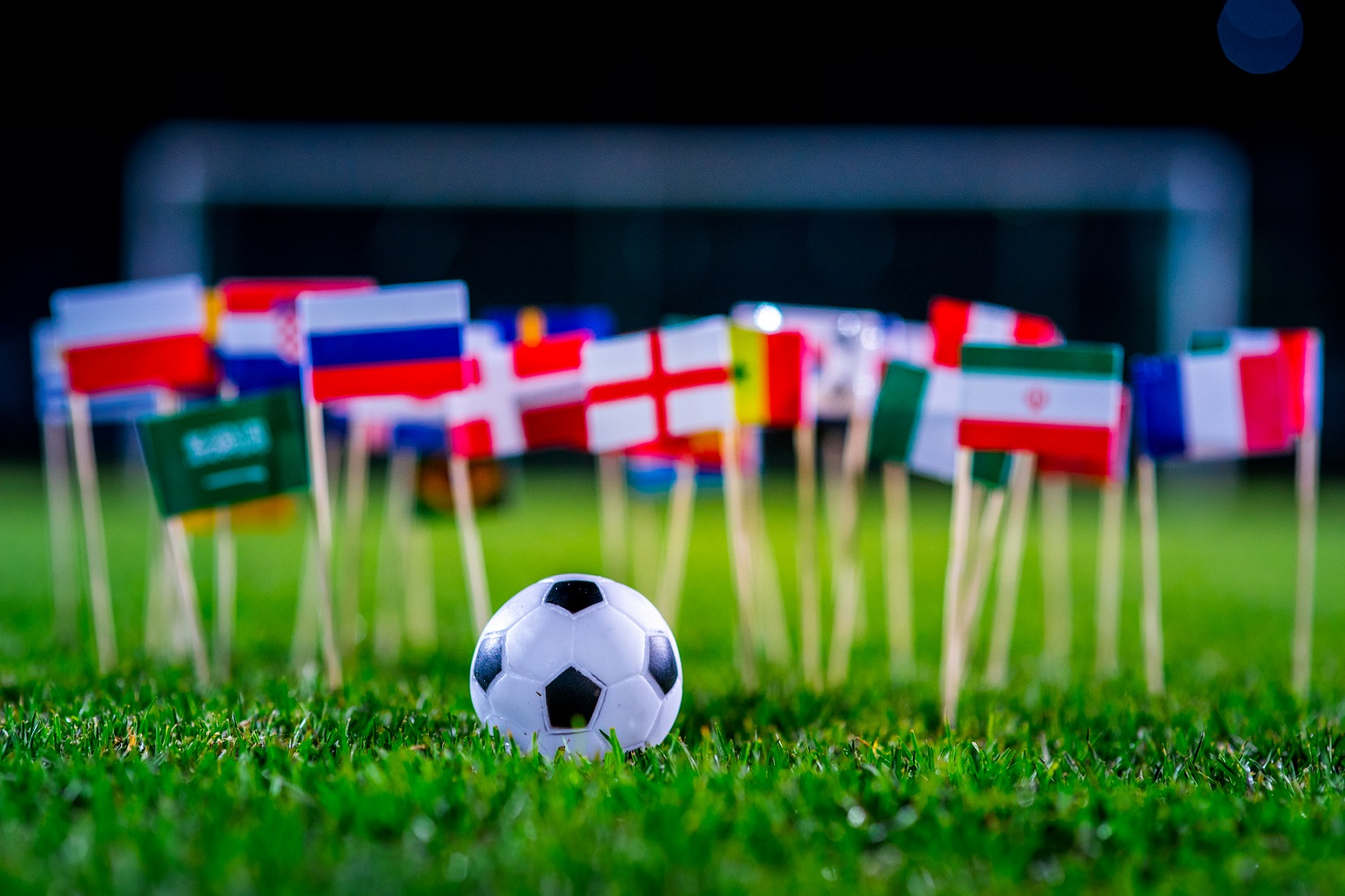 Soccer Fever: 2018 FIFA World Cup