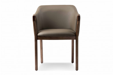Cameile  Dining Chair