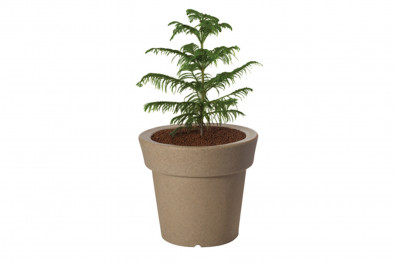 Eloisa Outdoor Planter