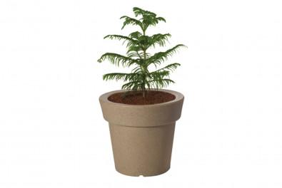 Eloisa Outdoor Planter