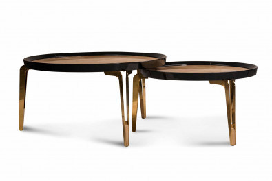 Kernel Coffee Table Set of 2