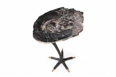 Petrified Ostrich Leg